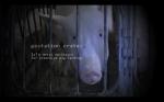 Gestation Crate