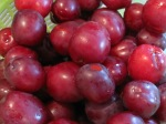 Plums – IMG_0324