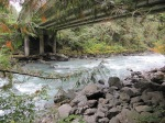 North Fork Nooksack River –IMG_0457
