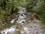 Canyon Creek - IMG_0507