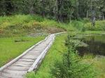 Pretty Bridge at Damfino Lake #2 –IMG_0551