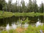 Damfino Lake #2 –IMG_0553