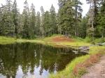 Damfino Lake #2 –IMG_0554