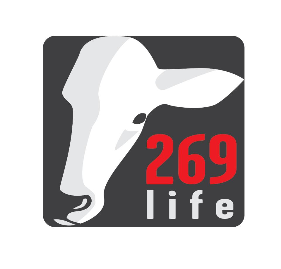 269 tattoo freeheel vegan for Vegan tattoo 269