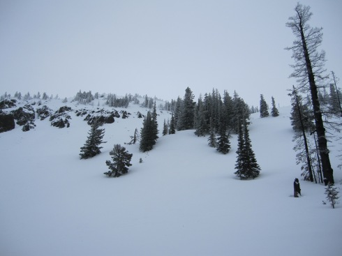 "This is where we first skied the ""Back Bowls,"" in 2011."