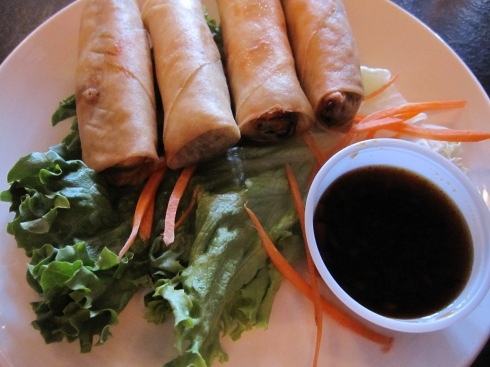 Vegetable Thai Spring Rolls - IMG_2081