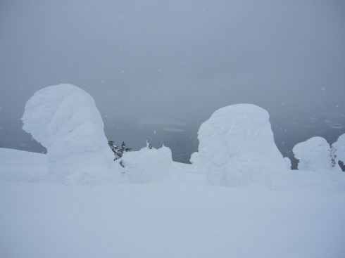 Snow Ghosts - IMG_2103