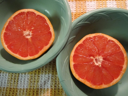 Grapefruit - IMG_2118
