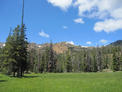 Meadow/Camp near 5000 ft