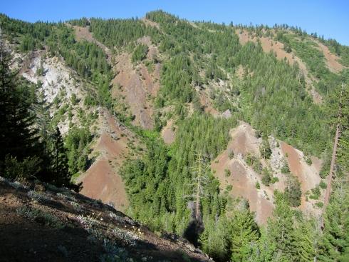 Iron Cr/Bear Cr Trail cuts across that slope ahead