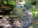 Chikamin Creek –IMG_2687