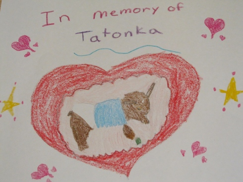 Drawing of Tatonka, by my niece (age 9)