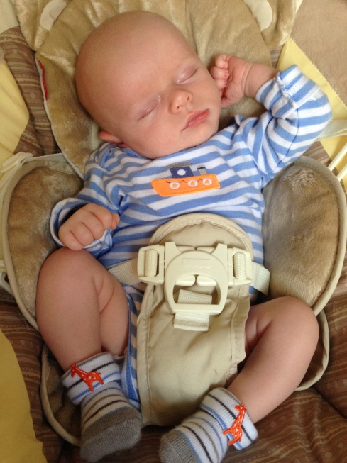 All comfy in his new swing - September 25, 2014