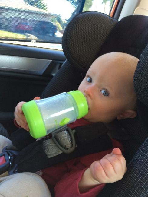 13.5 months old - October 4, 2015
