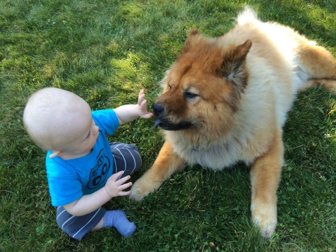 Making friends with a dog at Dan's party - June 13, 2015