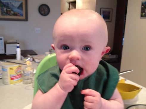 Sucking on a mission fig - 6.5 months old - March 13, 2015