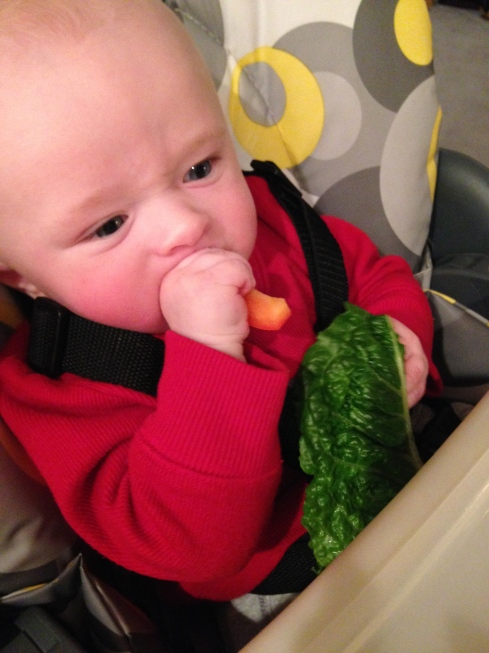 Sucking on a red pepper -5 months old - January 28, 2015