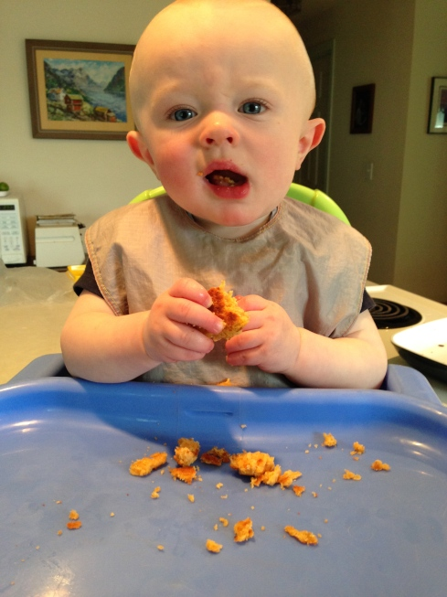 Curry patty - almost 9 months old - May 12, 2015