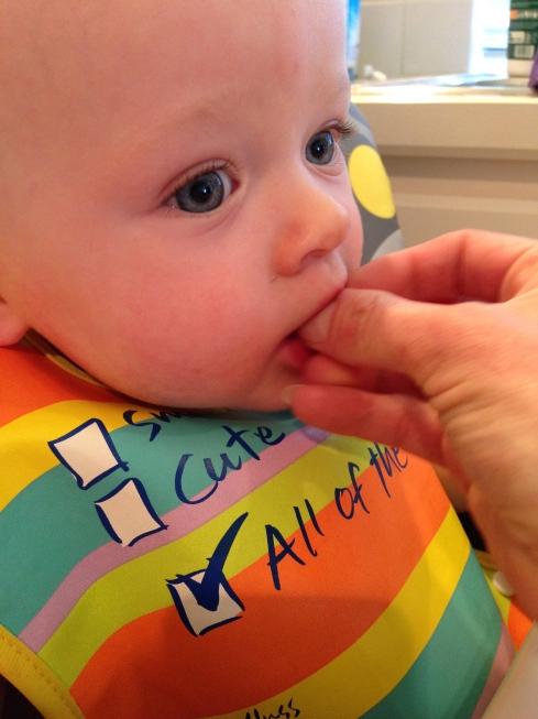 Little piece of cherry - 9.5 months old - June 8, 2015