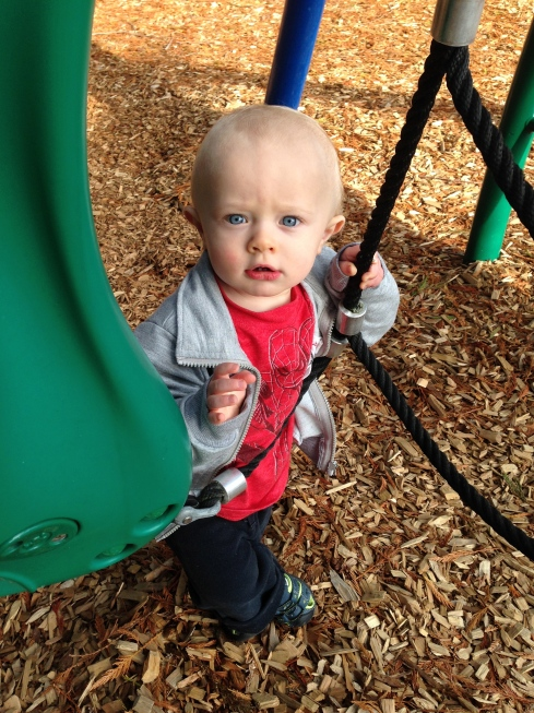 Almost 14 months old - October 16, 2015