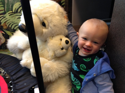 The bear at the dentist office - October 28, 2015