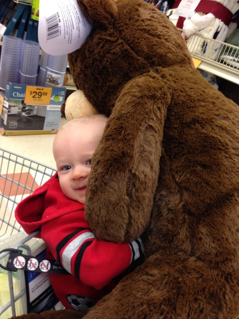 Pillow bear - Love at first sight! - November 3, 2015