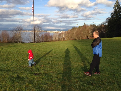 Harborview Park - January 24, 2016