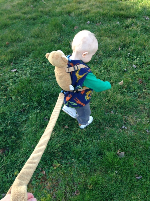 """First time outside with """"backpack bear"""" - February 10, 2016"""