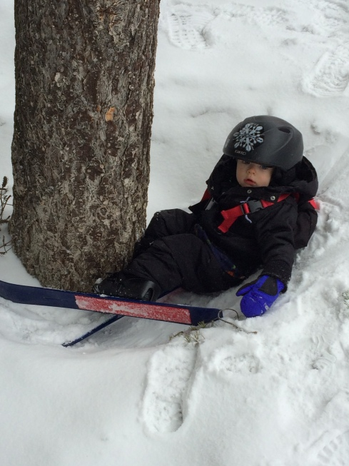 Already tree skiing! - March 13, 2016